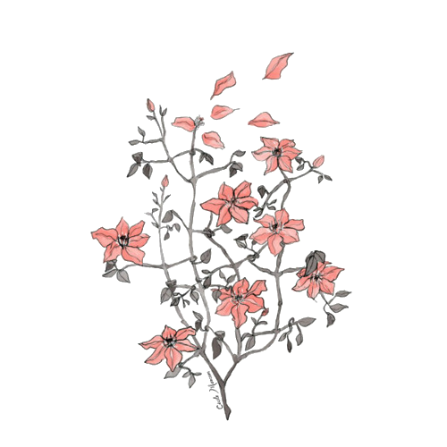 Draw Flowers Drawing Art Museum Drawing Png Download 500 500 Free Transparent Draw Flowers Png Download Clip Art Library
