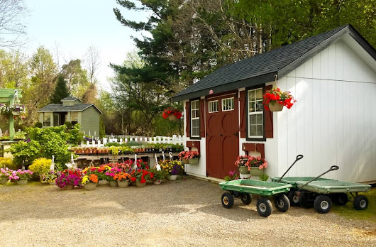 Top 8 Steps to Garden Shed Security - Don't Call Me Penny