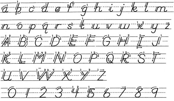 D Nealian Handwriting Worksheets - Scalien