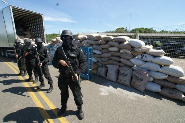 16 toneladas de maconha apreendidas na bahia (Foto: Divulgação/Polícia Civil)