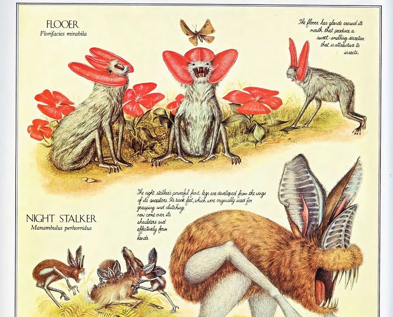 After the Future: Australia's New Extinction Crisis by Tim Flannery QE48