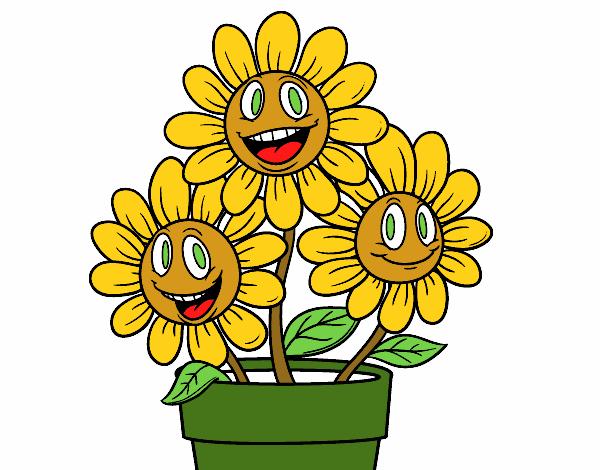 Flores Em Desenho Coloridas Flores Imagenes