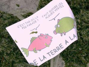Quimper : la pig parade polluée par la pig mascarade