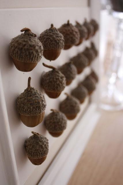 Inspiration - Tableau d'Automne - DIY Acorn Specimen Art (delia creates)