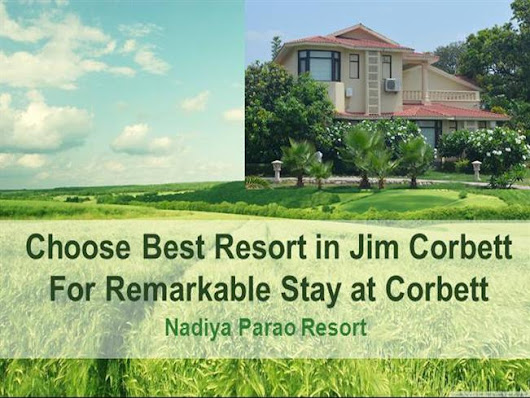 Choose Best Resort in Jim Corbett National Park for Remarkable Sta..