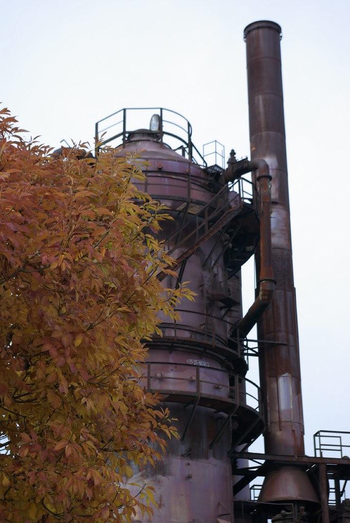 2007-10-27 Gasworks Park Seattle (40)