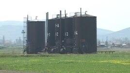 nafta patos marinza