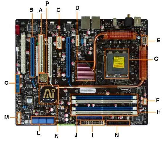 Adam Saputra Abadi  Tata Letak Komponen Pembentuk Motherboard