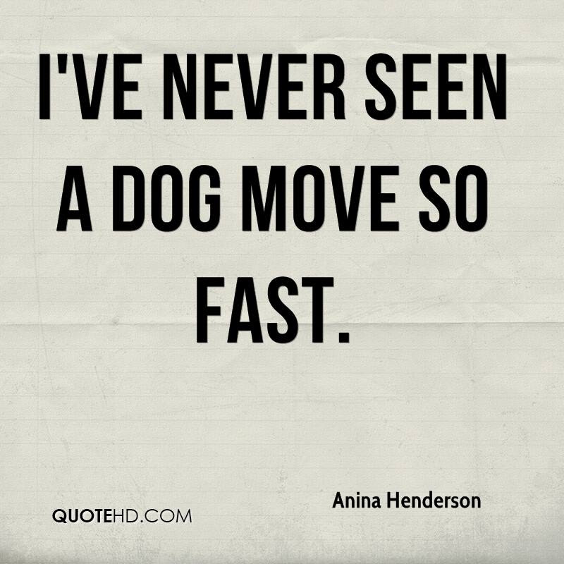 Ive Never Seen A Dog Move So Fast Quotespicturescom