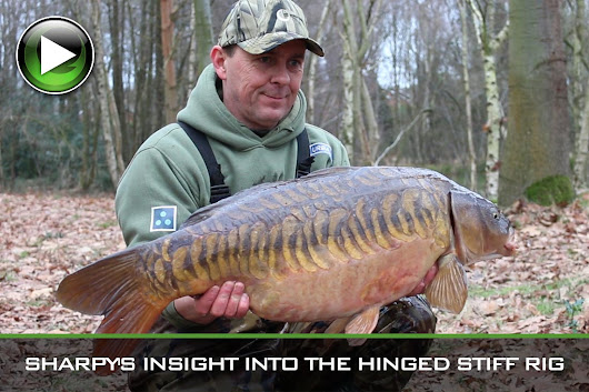 Carp Fishing ~ Sharpy Gives An Expert Insight Into The Hinged Stiff Rig ~ Video - Gardner Tackle