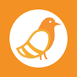 Pigeonhole Live - The Simplest Interactive Q&A Platform At Events