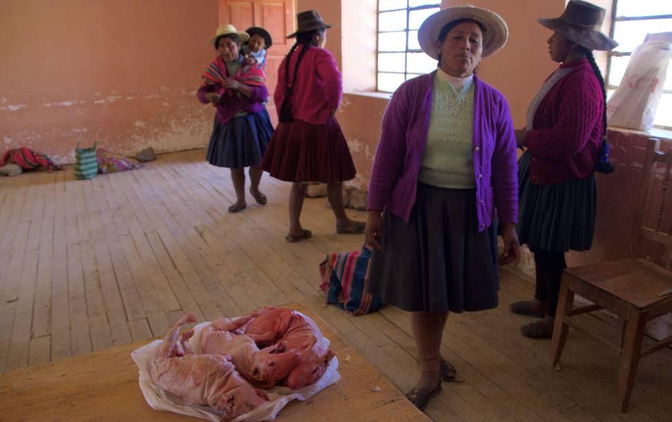 Mujeres de la comunidad campesina de Chocopia se preparan para cocinar unos cuyes, en primer plano.