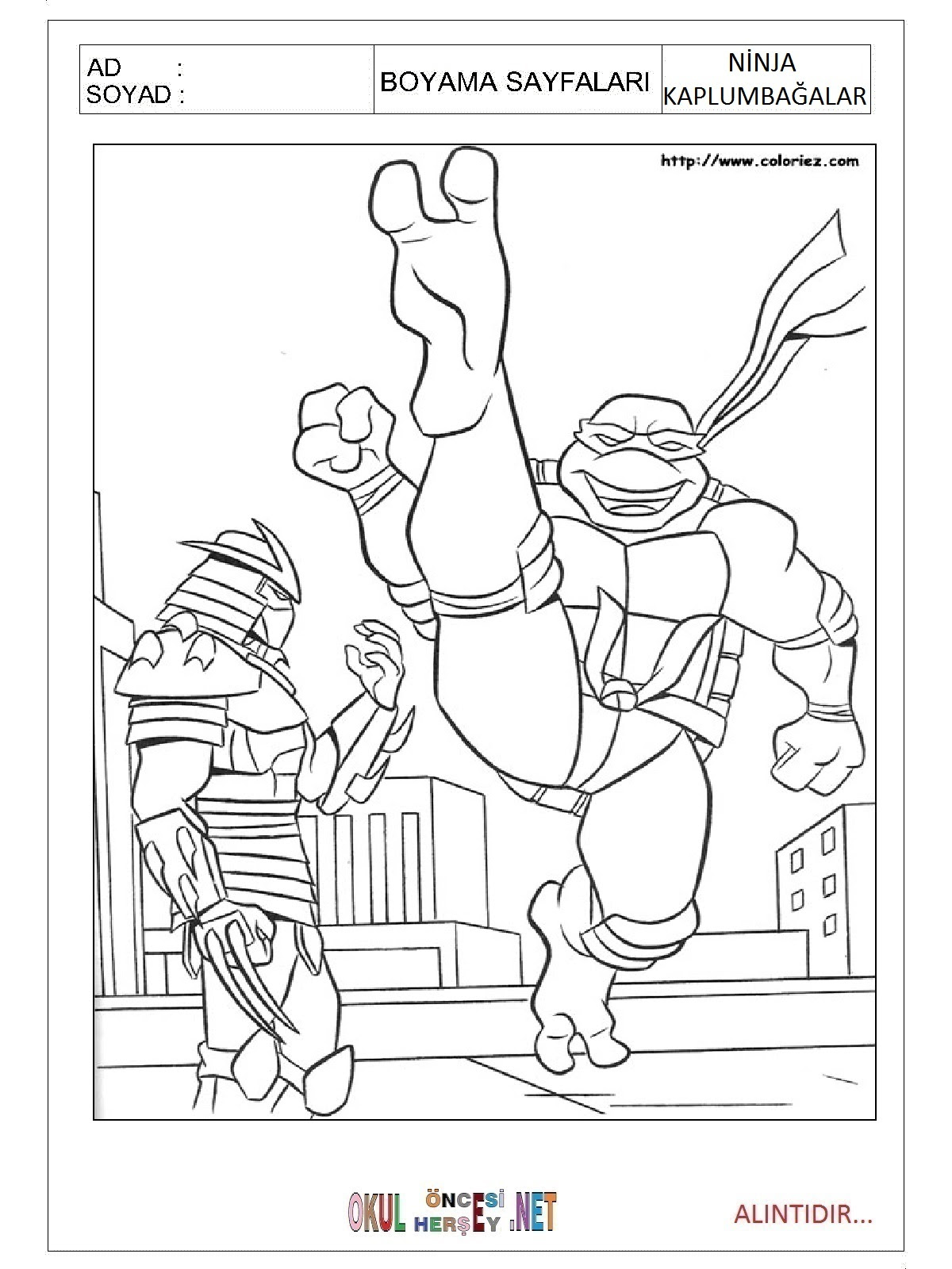 Ninja Kaplumbağalar Boyama Sayfaları