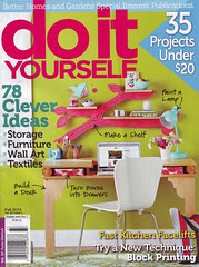 Do It Yourself magazine cover