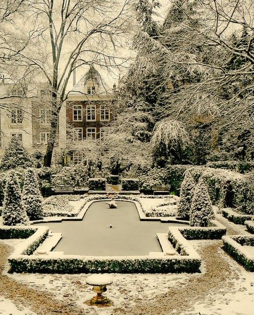 A formal Garden in the Winter