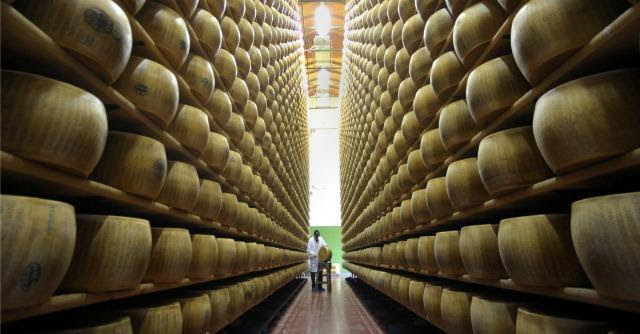 Tossina nel latte, 4 arresti e 2400 forme di Parmigiano Reggiano sequestrate