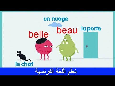 تعلم الاسماء في اللغة الفرنسية Apprendre les noms