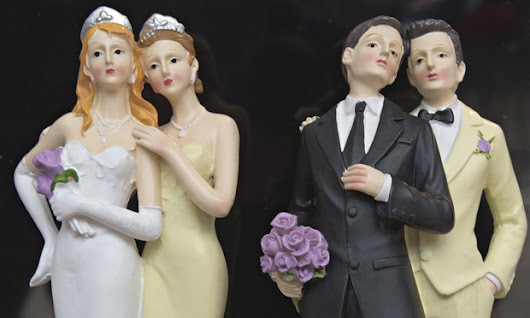 Finland legalises gay marriage | World news | The Guardian
