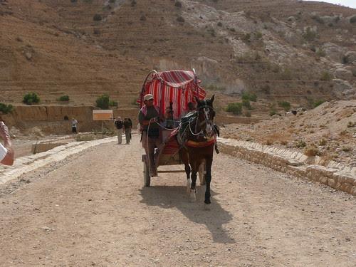 cart in Petra Jordan