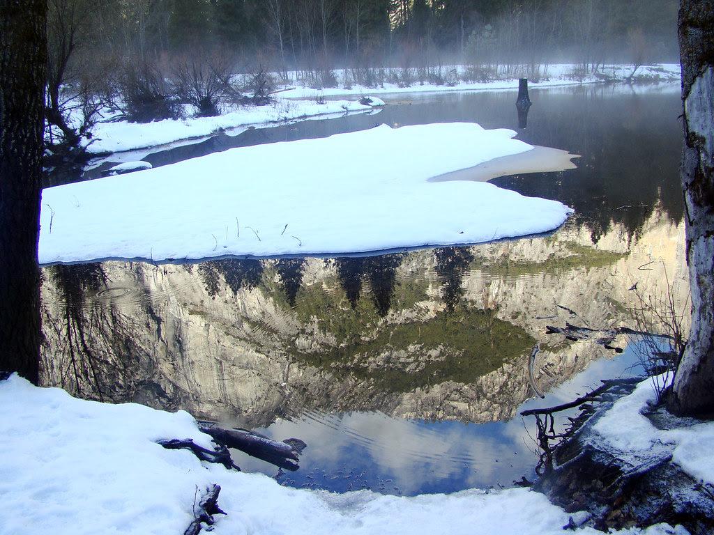 DSC03807 Yosemite Merced River reflection