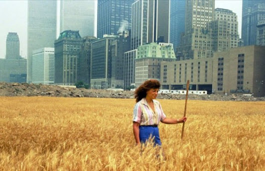 An Artist Harvested Two Acres of Wheat on Land Worth $4.5 Billion in 1982 - Unshootables