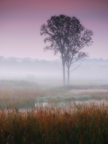 Misty autumn dawn by James Jordan, on Flickr