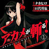 Is Akame Ga Kill A Shonen