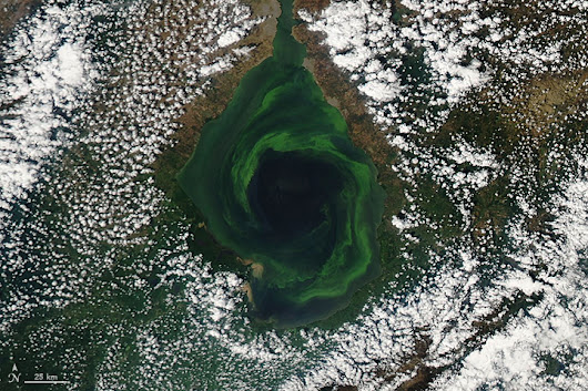 An Emerald Vortex : Image of the Day