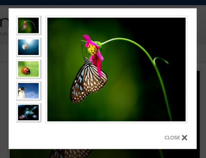 Joomla Extensions: Ignite Gallery - Popular Photo Gallery Joomla Extension - JoomlaHacks.com