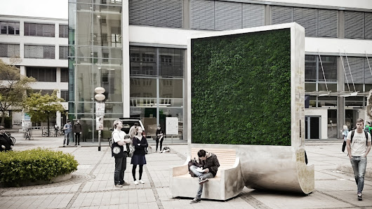 The 'moss wall' that helps cities breathe