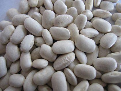 Ползите от белия фасул