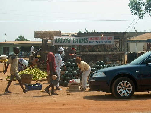Market scene - Agloo Farms