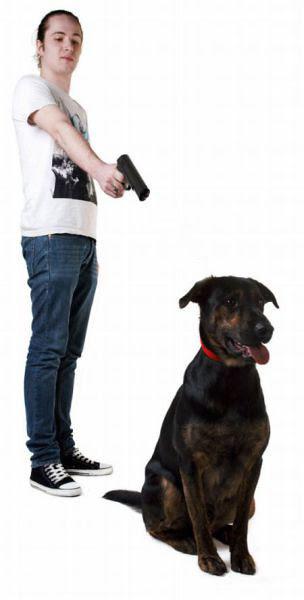 Rantai Anjing 03