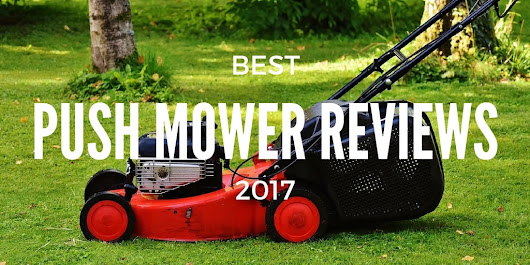The Best Lawn Care Blog