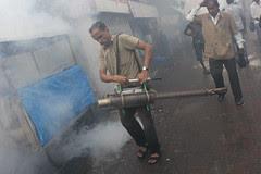 mosquito killing ak 47 by firoze shakir photographerno1