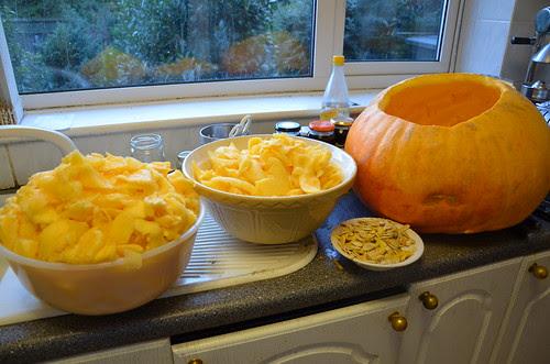pumpkin Oct 13 3