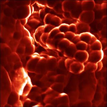 Pacific Nanotechnology, 1x1um Polymer nano-spheres
