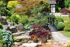 Japanese Garden Design Windowsunity