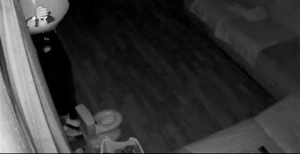 Revisa las cámaras de vigilancia de su casa para comprobar qué hacía su perro en el baño
