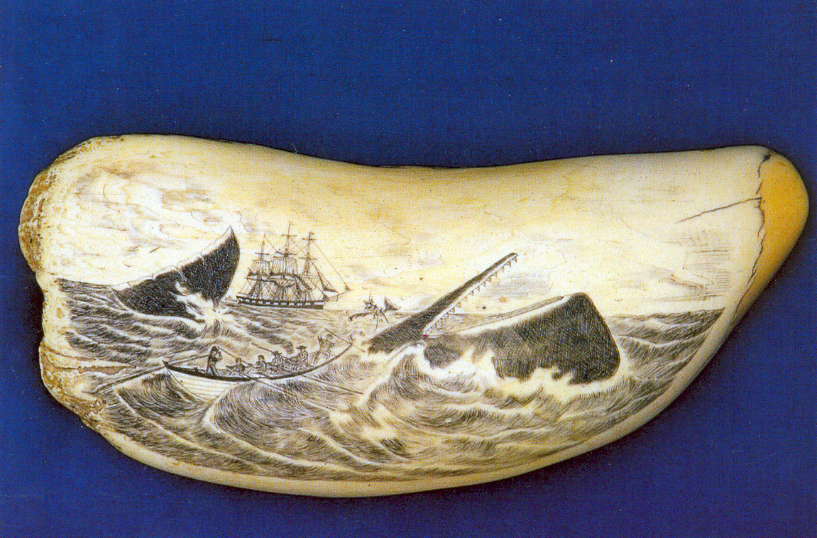 1000+ images about Antique and Modern Scrimshaw on ...