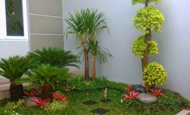 20 Desain Taman Rumah Minimalis Yang Banyak Digunakan