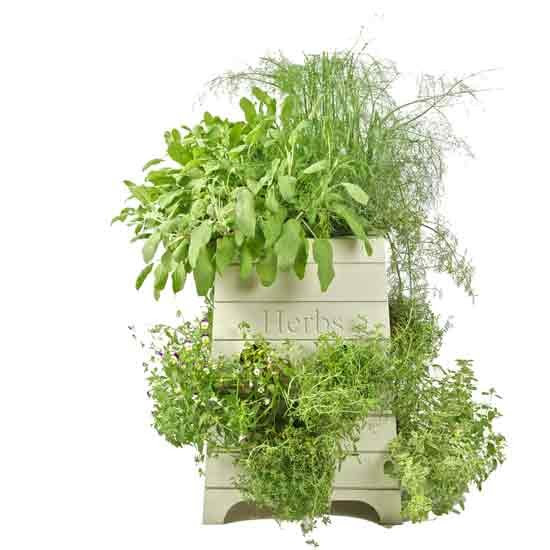 Beehive herb planter - Sparrow & Finch   Outdoor pots   Plant pot ...