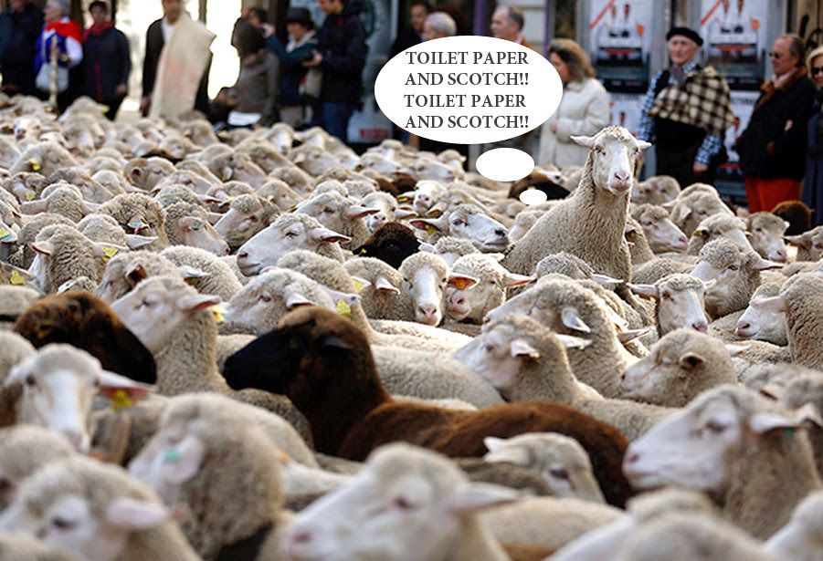 don't be part of the herd