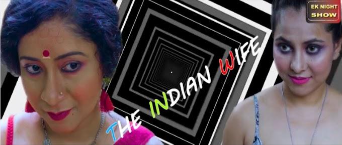 Indian Wife (2020) - Ek Night Show Hindi WEB Series Season 1