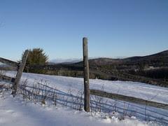 winter field by Teckelcar