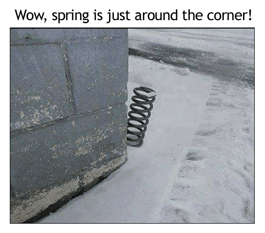 About Spring