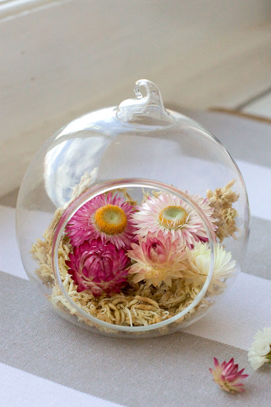 DIY: Autumn Glass Terrarium - Straw Flowers and Moss | Bit Square