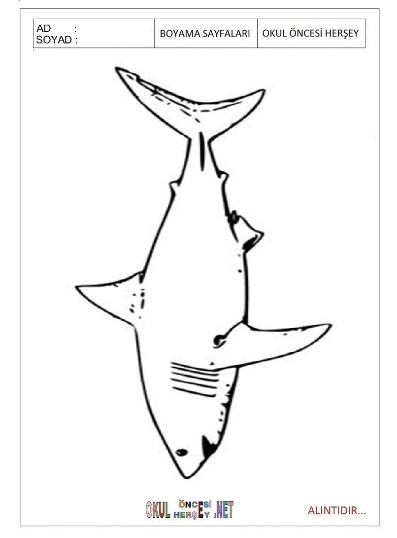 Köpek Balığı Boyama Sayfaları