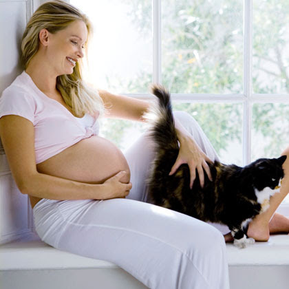 Pregnant? Stay Away From That Cat Litter!