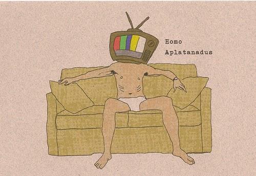 Asoziale Medien und dummes Internet?